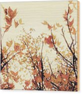 September Song Wood Print