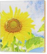 September Sun Wood Print
