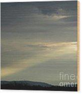 September Sunbeam Wood Print