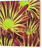 September's Radiance In A Flower Wood Print