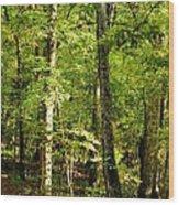 September's Woodlands Wood Print