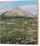 Sequoi National Park Wood Print