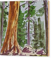 Sequoia Park - California Sketchbook Project  Wood Print