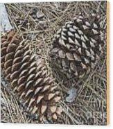 Sequoia Pine Cones Wood Print