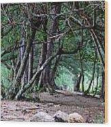Serene Escape Wood Print