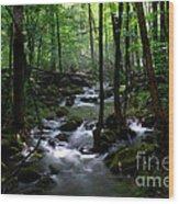 Serene Greenbrier Area Stream  Wood Print