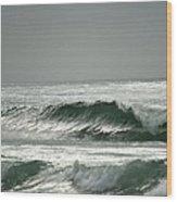 Serenity At Bodega Bay Wood Print