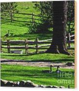 Serenity At Tashmoo Farm Wood Print