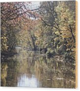 Serenity River Wood Print by Nancy Edwards