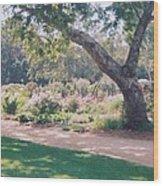 Serenity Wood Print by Robert Bray