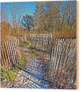 Serenity Trail.... Wood Print