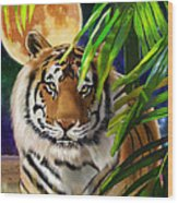 Second In The Big Cat Series - Tiger Wood Print