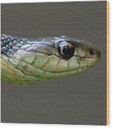 Serpent Profile Wood Print