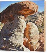 Serpent Trail Caprock Wood Print