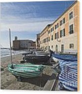 Sestri Levante And Boats Wood Print