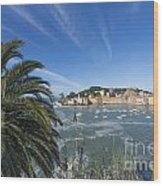 Sestri Levante With Palm Tree Wood Print