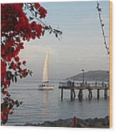Set Sail  Wood Print