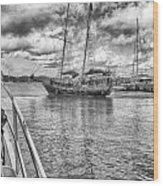 Setting Sail Wood Print