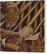 Settled Leaves  Wood Print