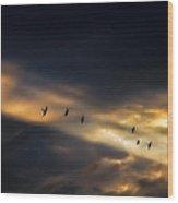Seven Bird Vision Wood Print