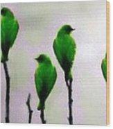Seven Birds Of Green Wood Print