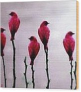 Seven Birds Of Red Wood Print