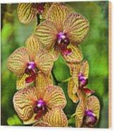 Seven Blooms Wood Print
