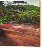Seven Colored Earth In Chamarel 3. Mauritius Wood Print