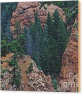 Seven Falls Mountain's Colorado Wood Print by Robert D  Brozek