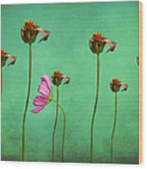 Seven Stems Wood Print