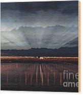 Severn Bridge Wood Print