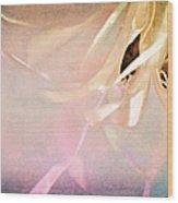 Shabby Chic Ballet I Wood Print