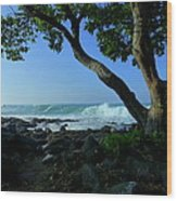 Shade On The Shore Wood Print