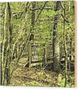 Shades Mountain Bridge In The Forest Wood Print