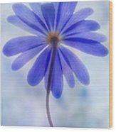 Shades Of Blue II Wood Print