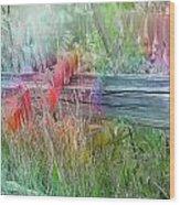 Shades Of Color Wood Print
