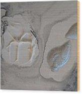 Shades Of Grey 22 Wood Print