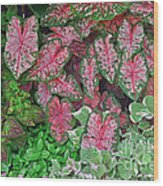 Shades Of Pink And Green And A Hint Of Purple Wood Print