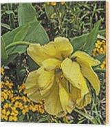 Shades Of Yellow Wood Print