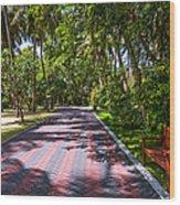 Shadow Alley In Sun Island Resort. Maldives  Wood Print