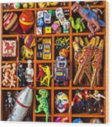 Shadow Box Full Of Toys Wood Print