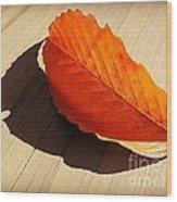 Shadow Cast By Leaf Wood Print