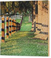 Shadow Fencing Wood Print