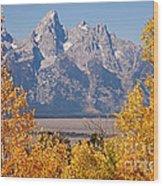 Shadow Mountain Grand Teton National Park Wood Print