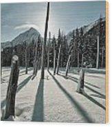 Shadow Of Former Selves Wood Print