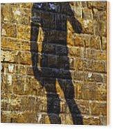 Shadow Of Michaelangelo's David Wood Print