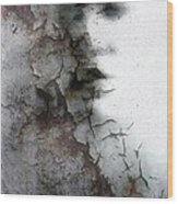 Shadow On A Wall Wood Print