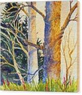 Shadow Patterns II Wood Print