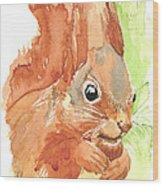 Shadow Tail Red Squirrel Wood Print