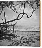 Shadow Tree Cas En Bas Wood Print